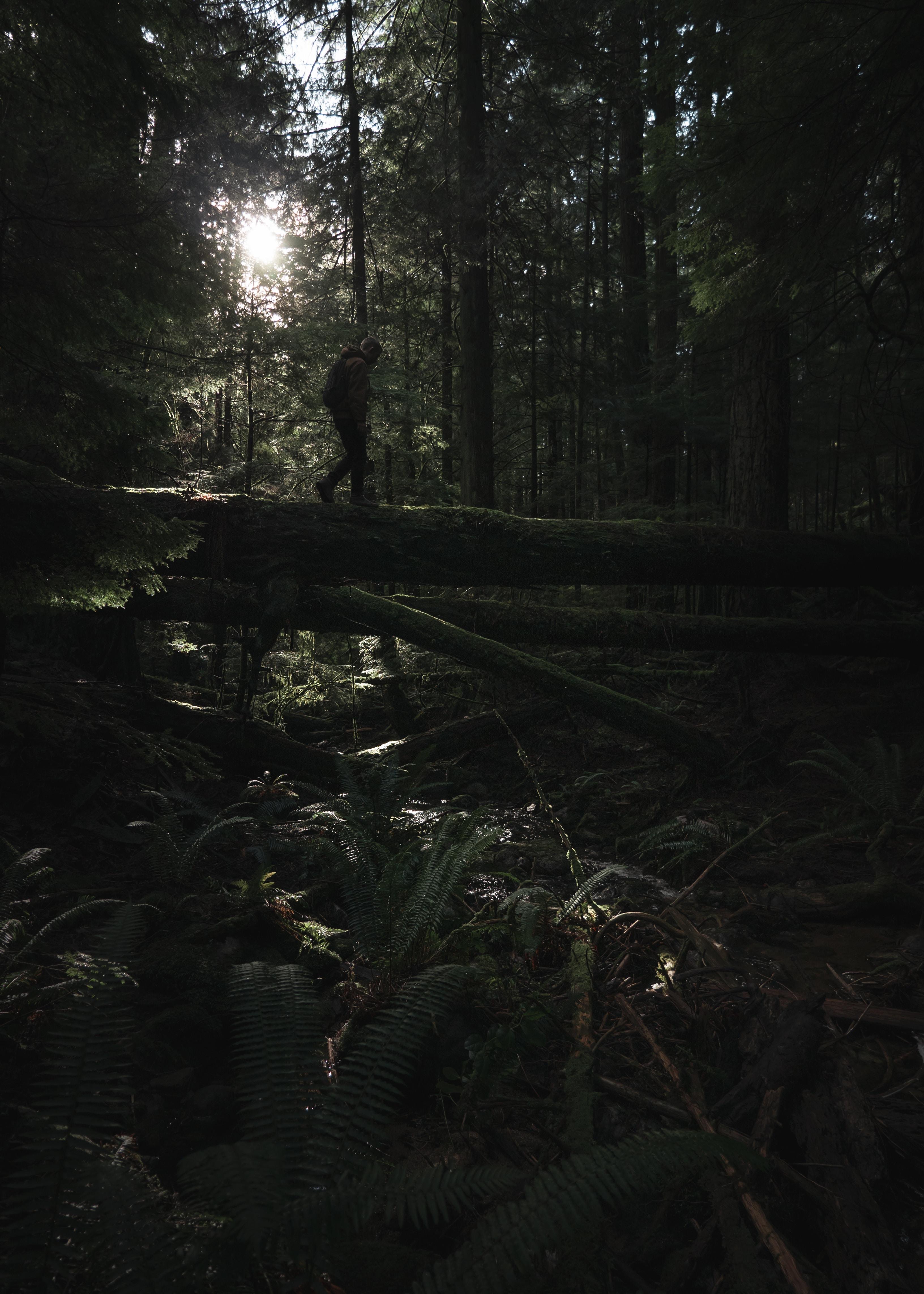 man walking on tree log