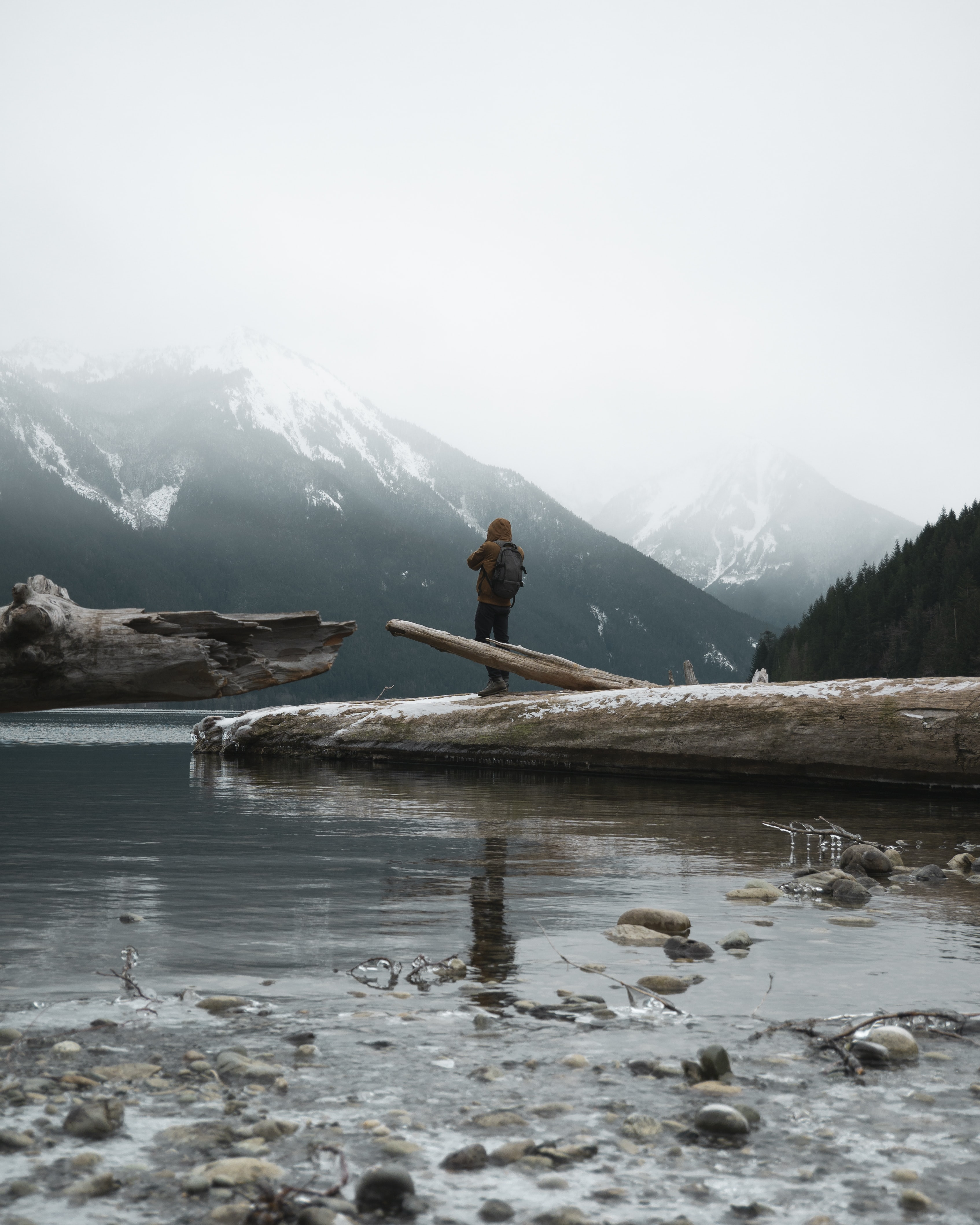 person standing on tree trunk fallen into the lake