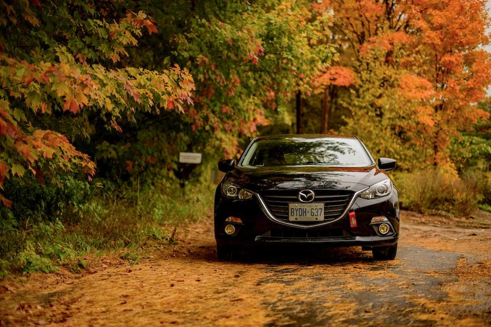 black Mazda car in forest
