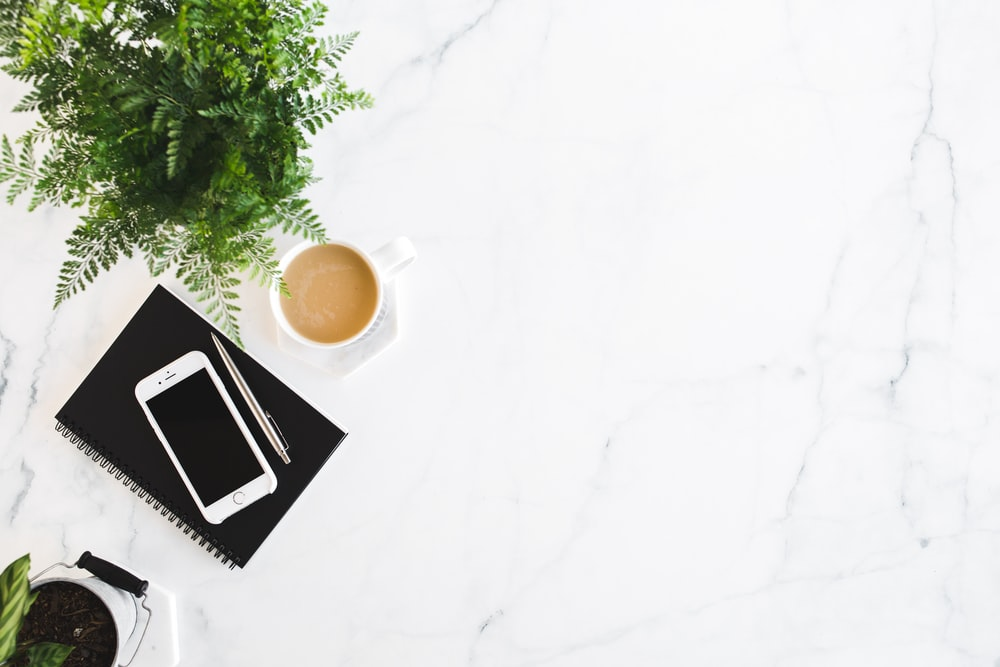 iPhone and retractable pen on top of black notebook beside white cup and fern plant