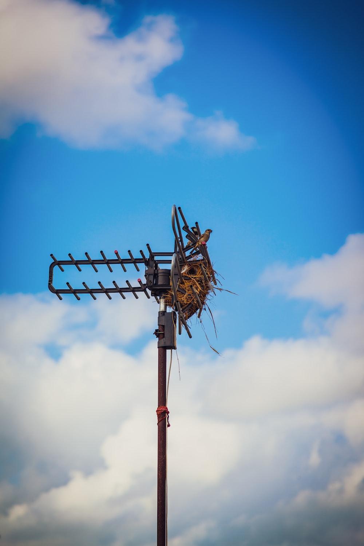black metal post under blue sky
