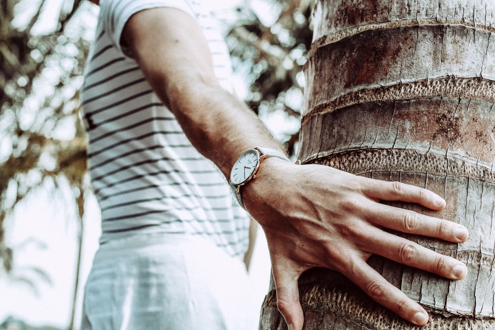person in white shirt holding tree trunk