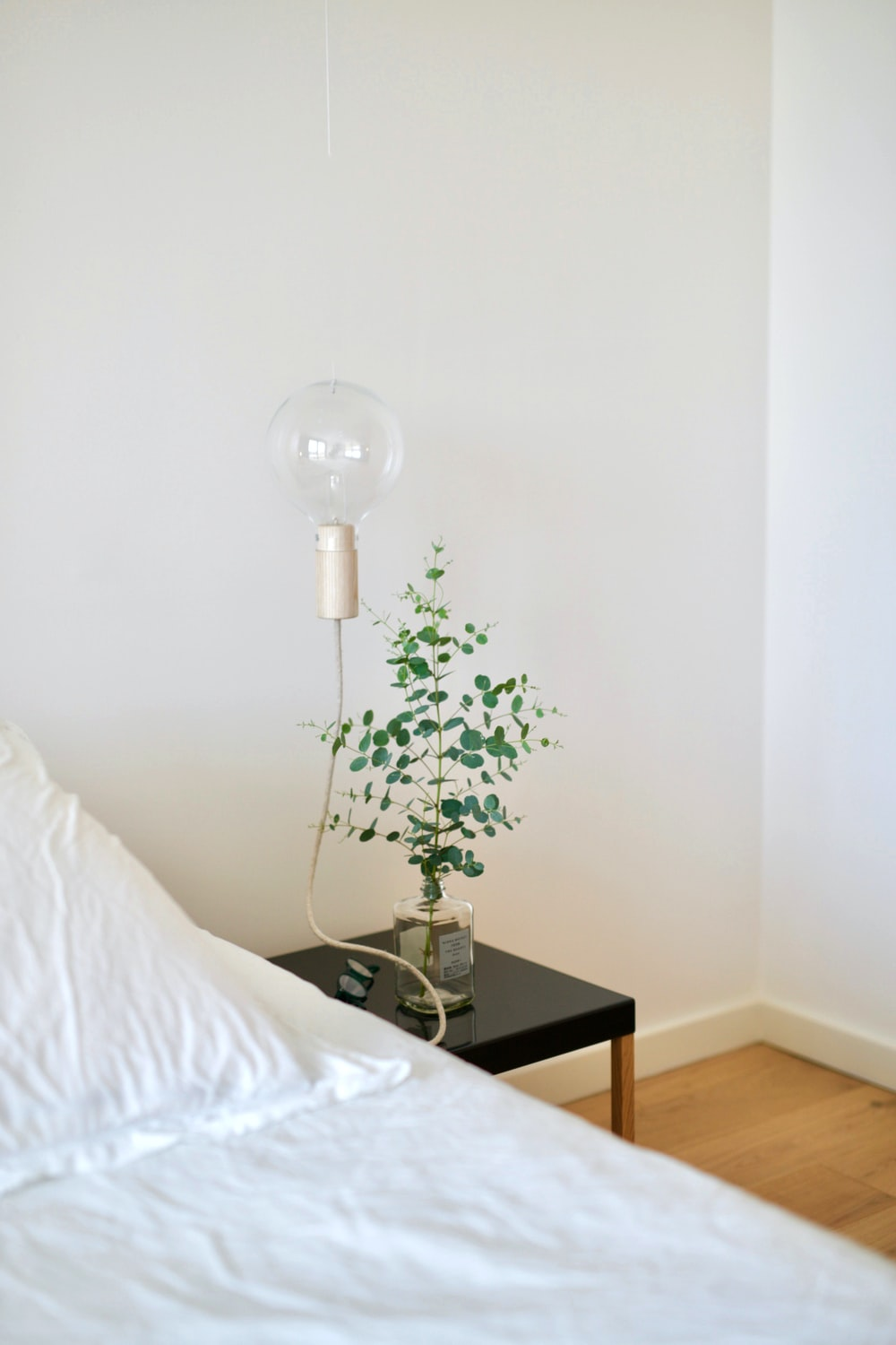 green plant beside table lamp in room
