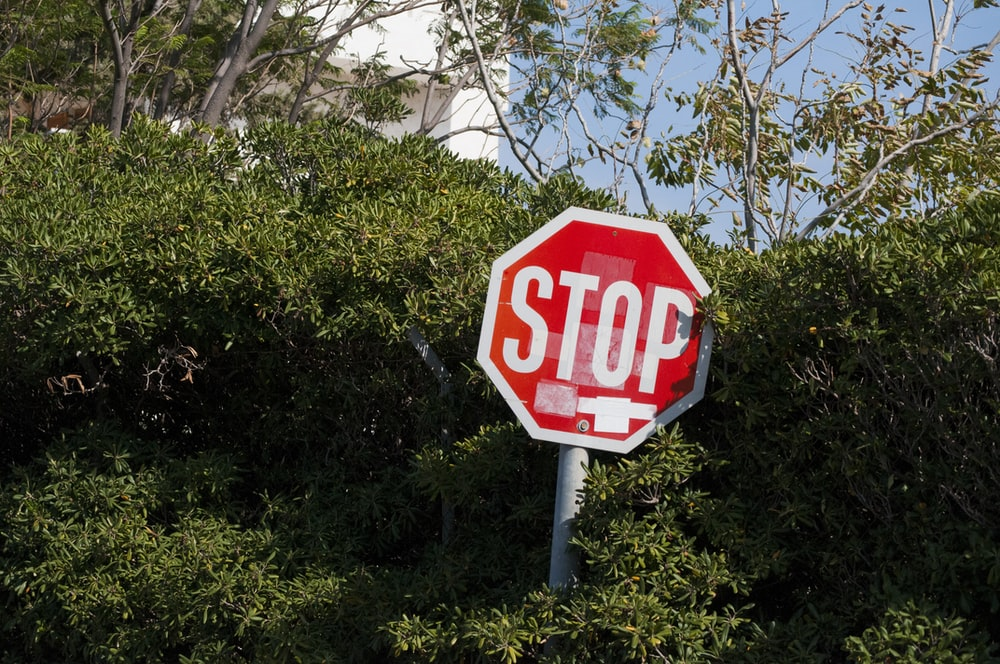 red and white Stop sign board