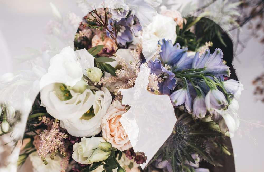 purple and white petaled flowers