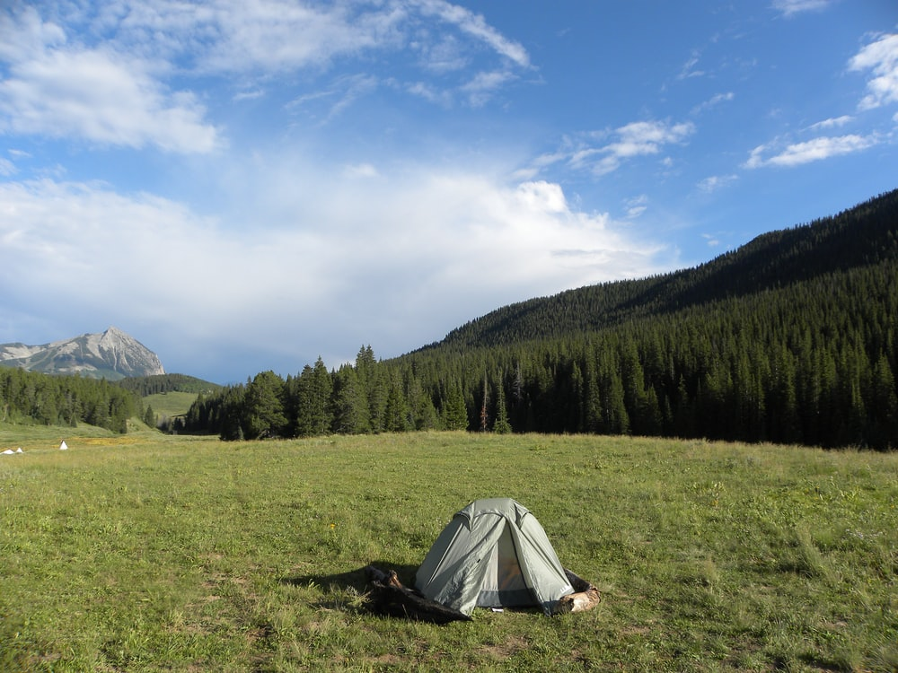 gray tent near green leaf trees