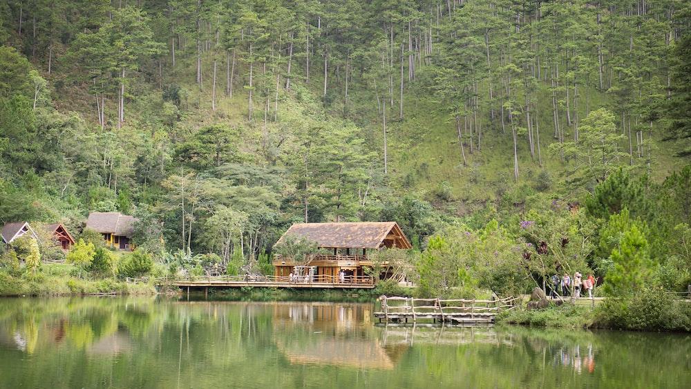 brown hot beside lake