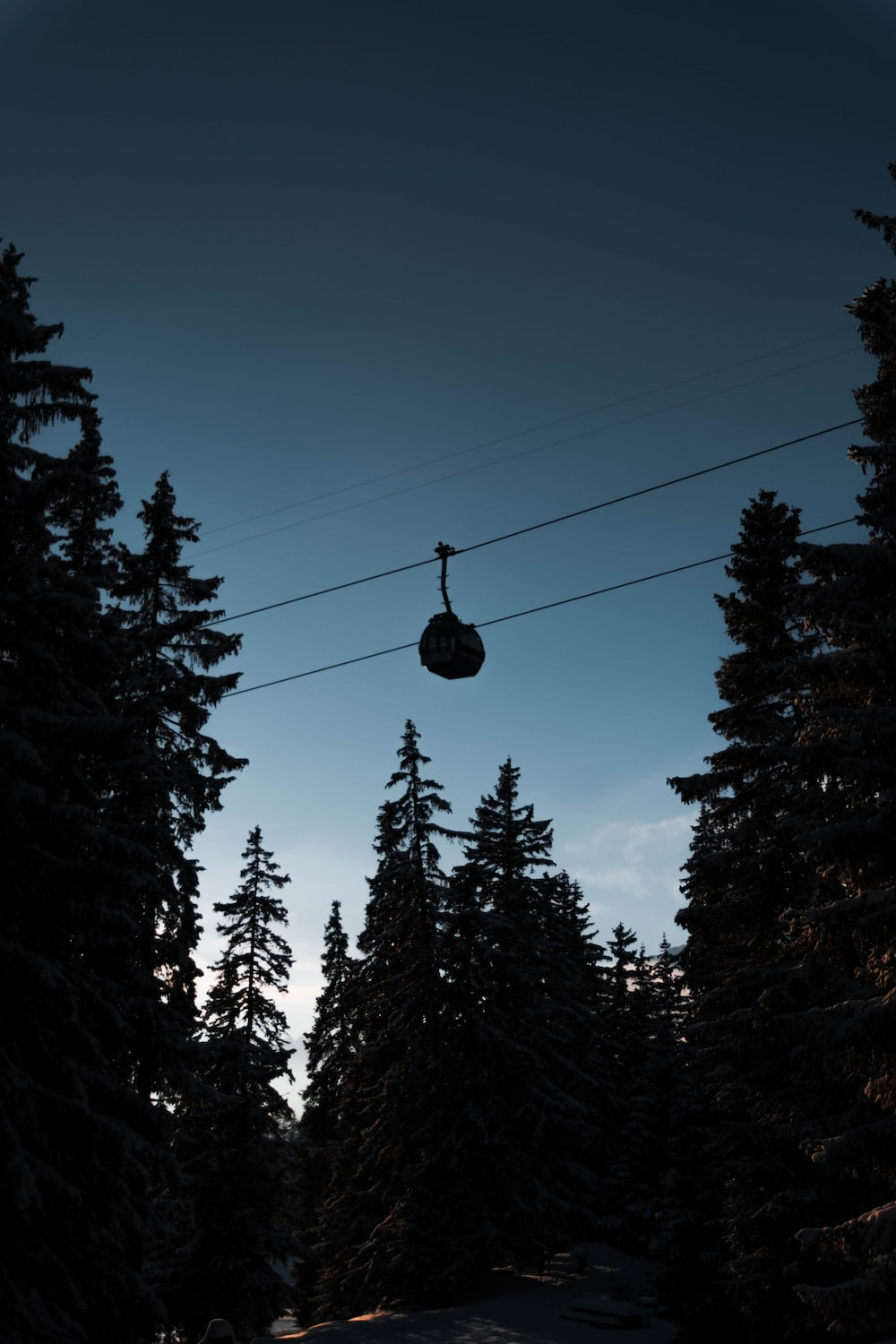 silhouette cable car and trees