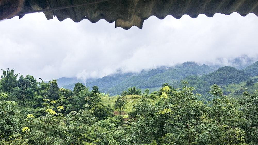 mountain window scenry