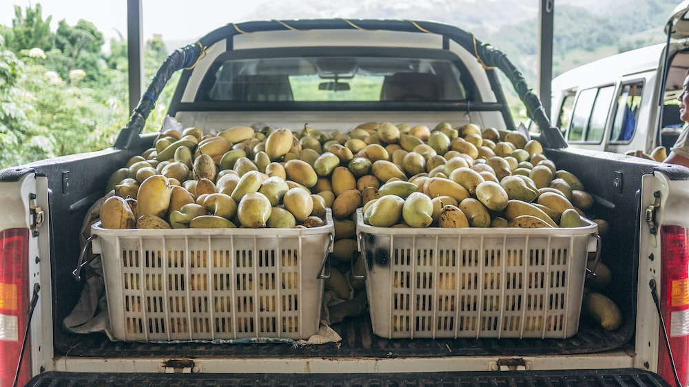 fruits on plastic crate and pickup truck bed during daytime