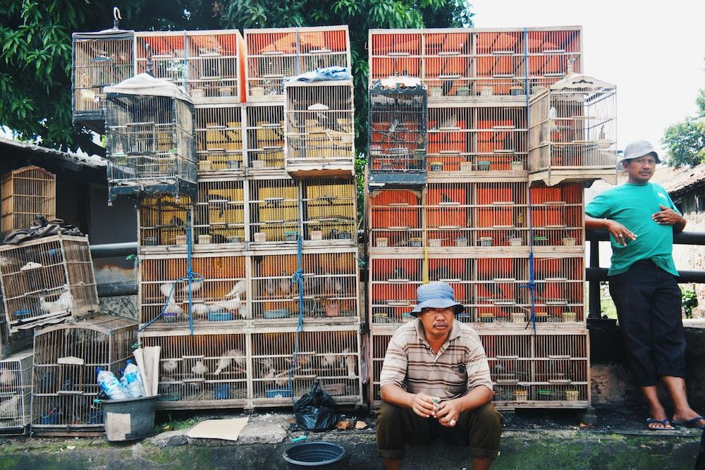 bird lot and metal pet cages