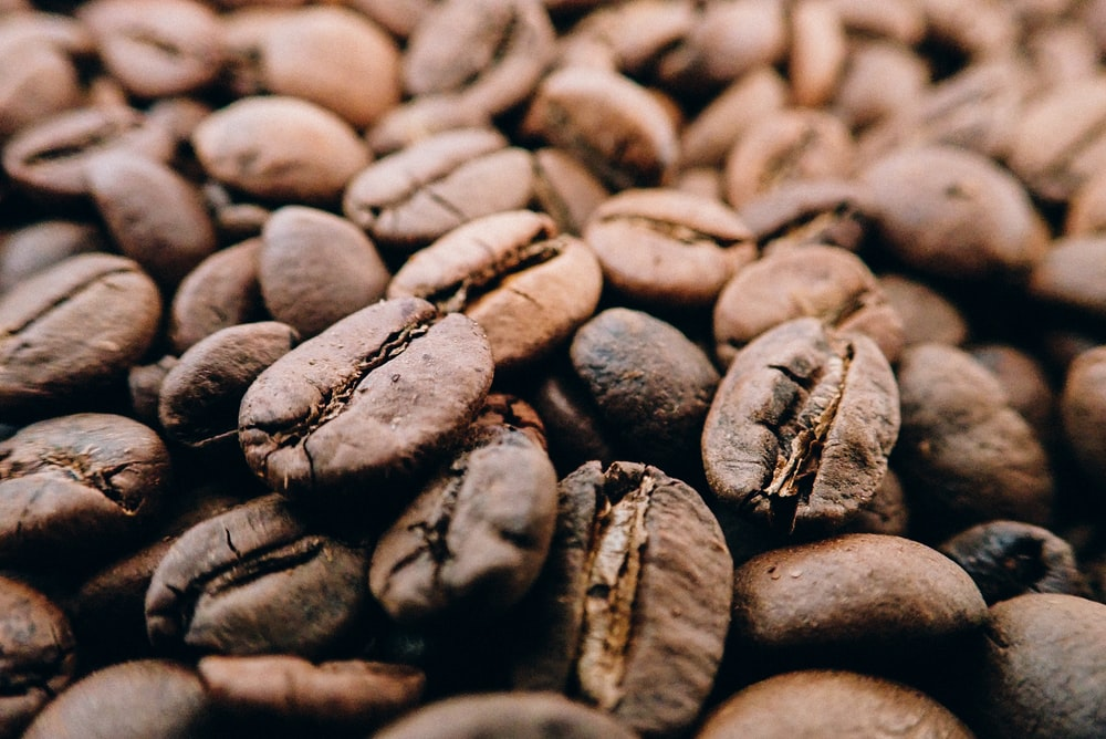 selective focus photography of brown coffee seeds