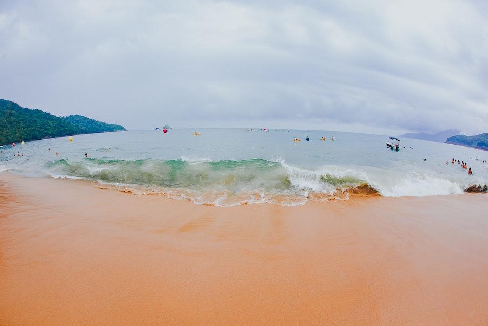 ocean seashore waves