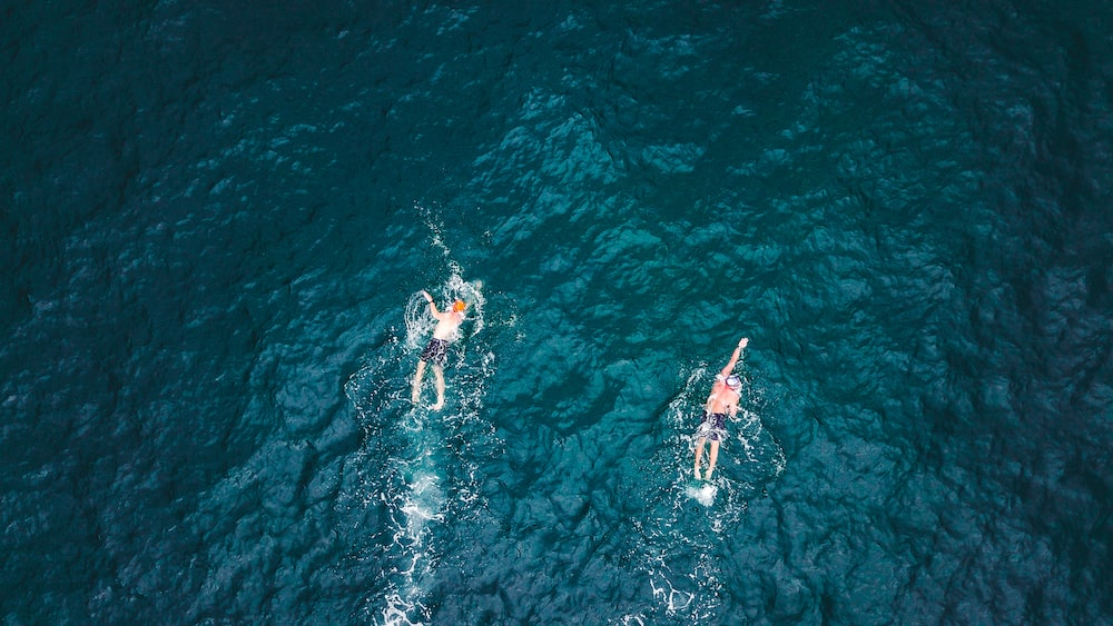 two person's swimming on sea