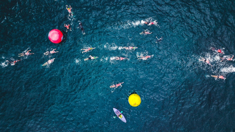 aerial photography of people with kayak and surfing board on body of water