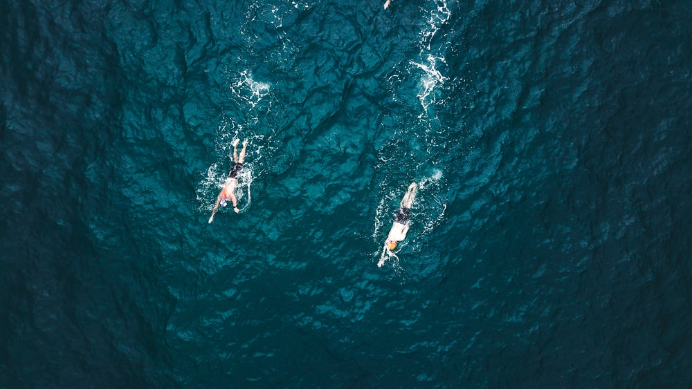 aerial photography of two persons swimming at sea