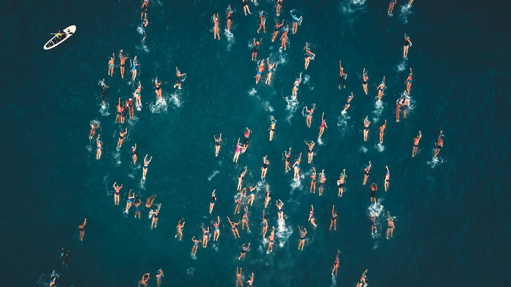 aerial photography of people swimming on beach