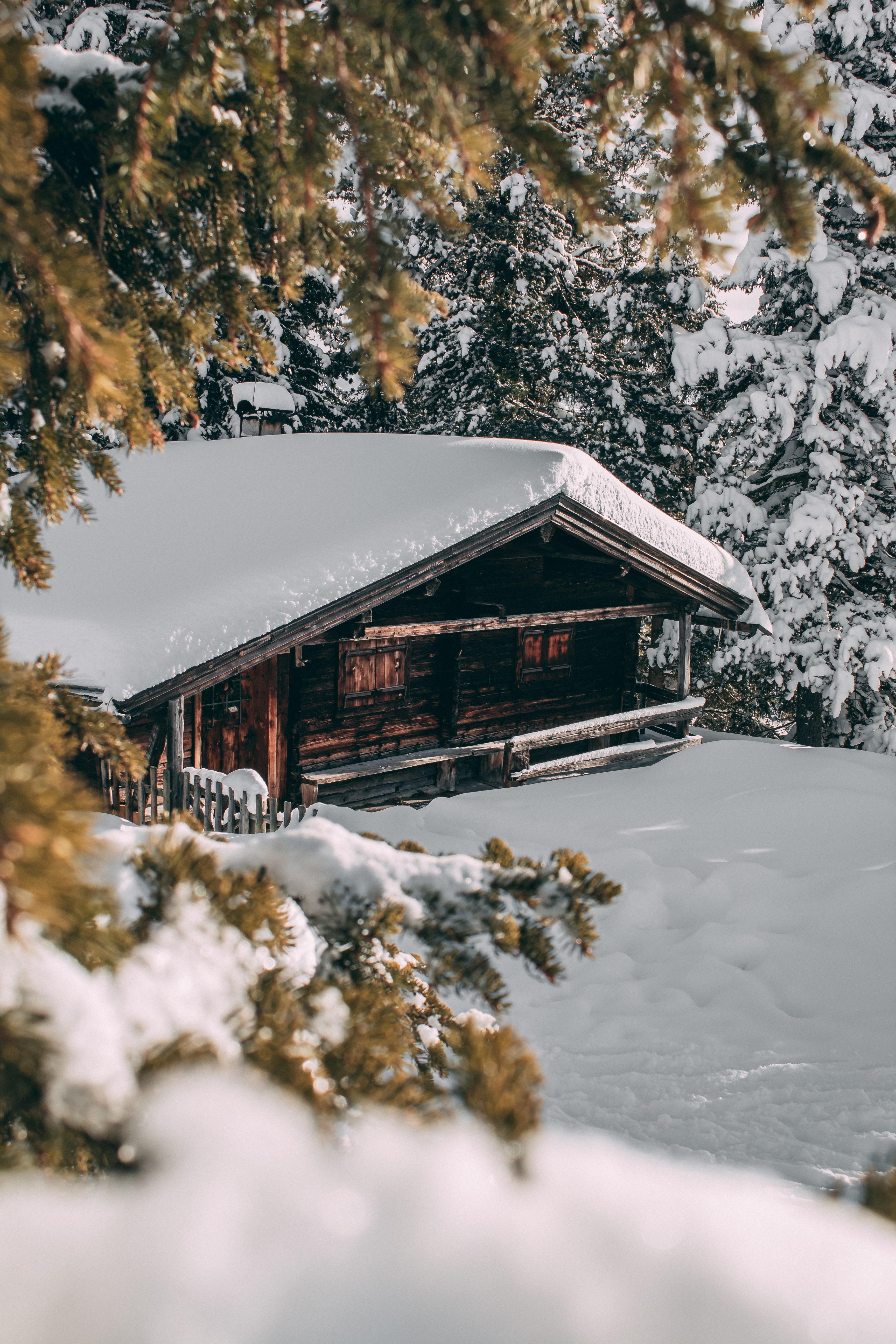 house with snow covered roof surrounded by trees