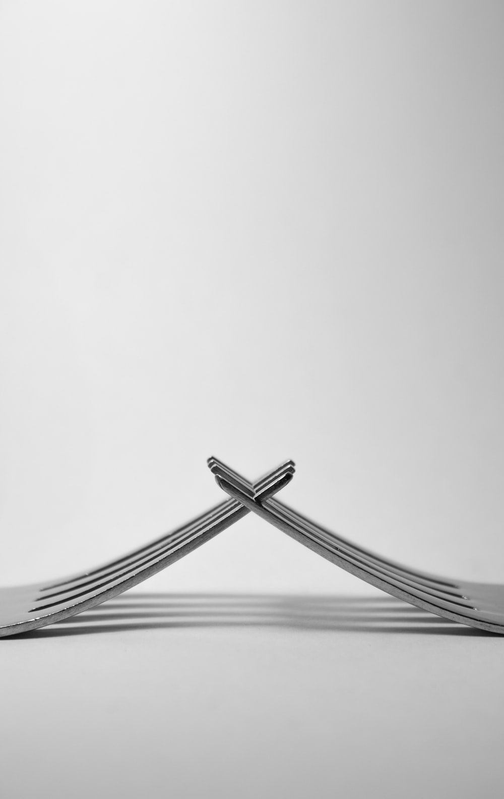 photo of stainless steel forks in white background