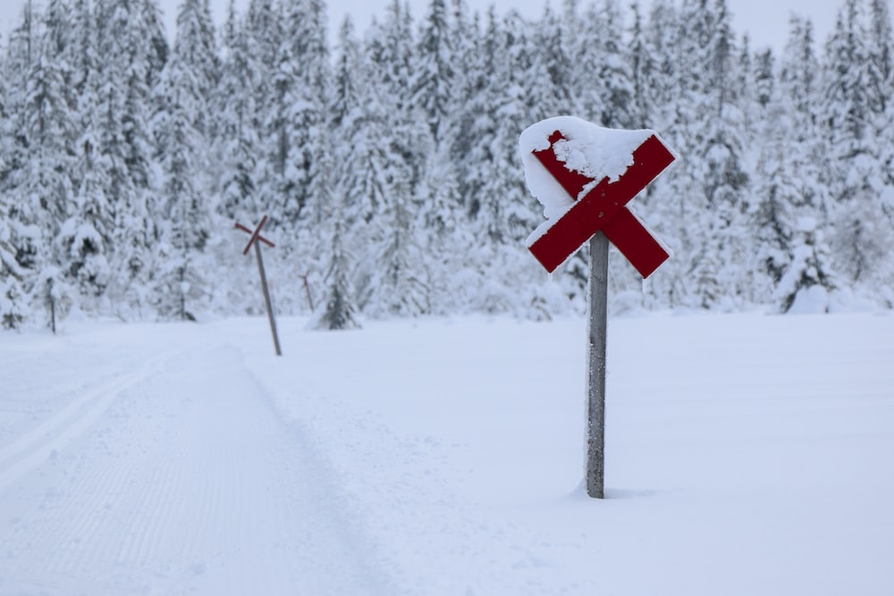 x sign near pine trees covered with snow