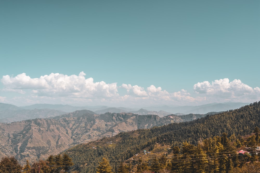 trees and mountains during daytime