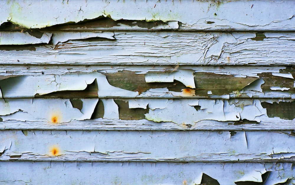 closeup photo of brown and white painted wall