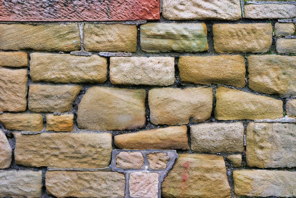 closeup photo of bricked wall