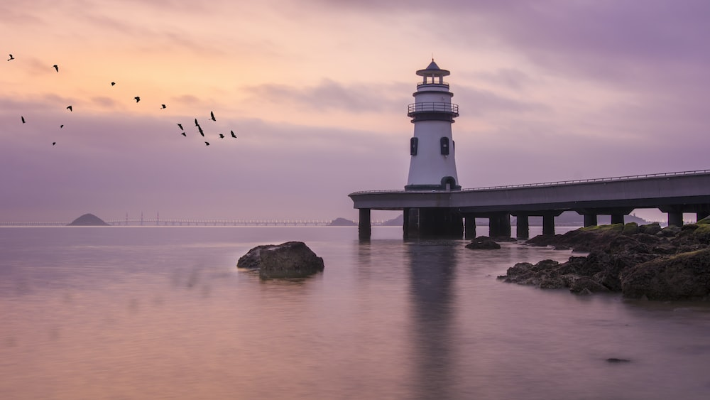 flock of flying birds and lighthouse
