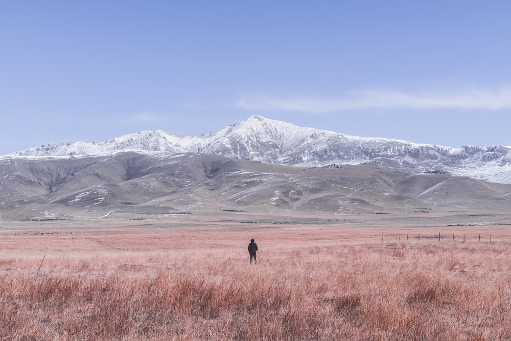 person standing on brown field overlooking mountain with snow during daytime