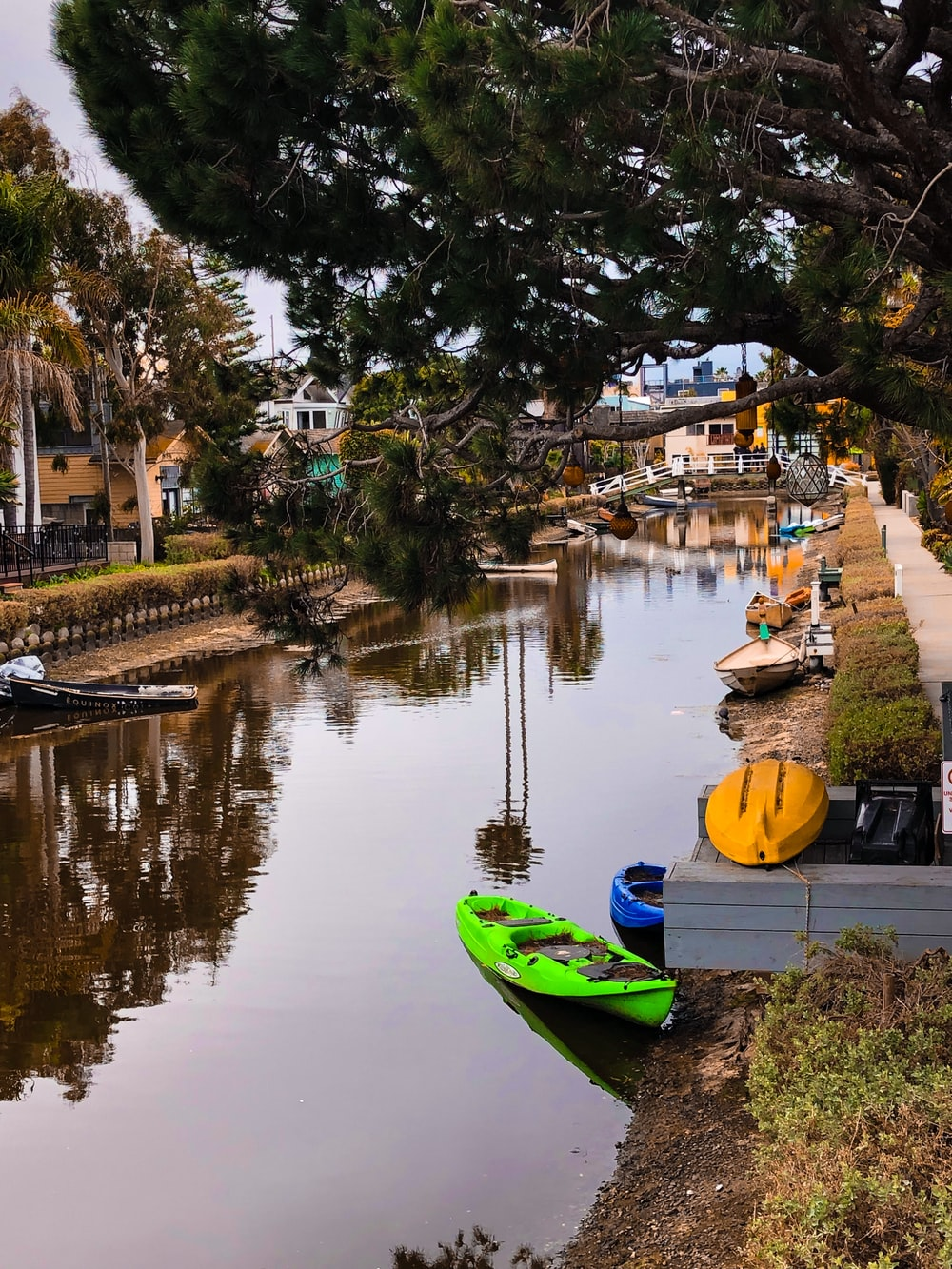 green kayak parked near tree