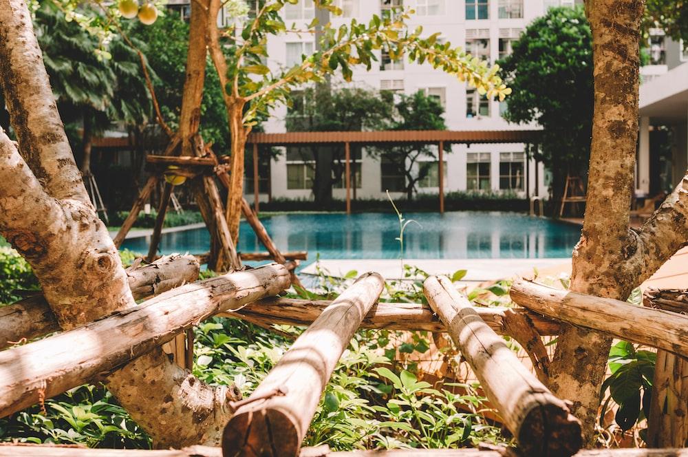 pool beside pergola
