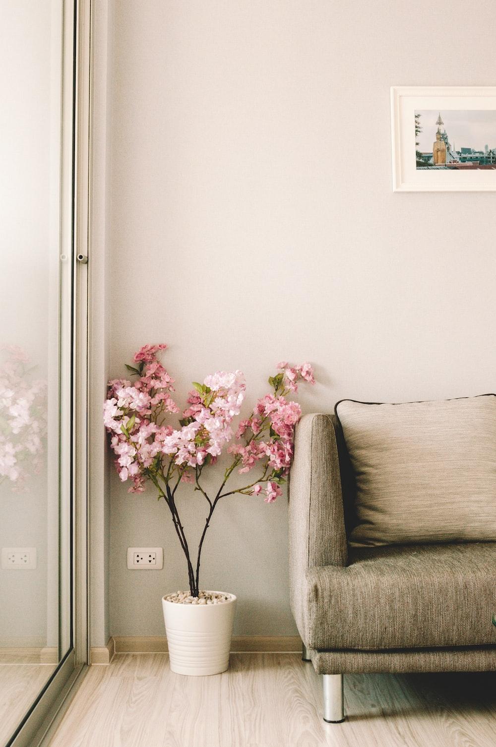 pink flowers beside sofa