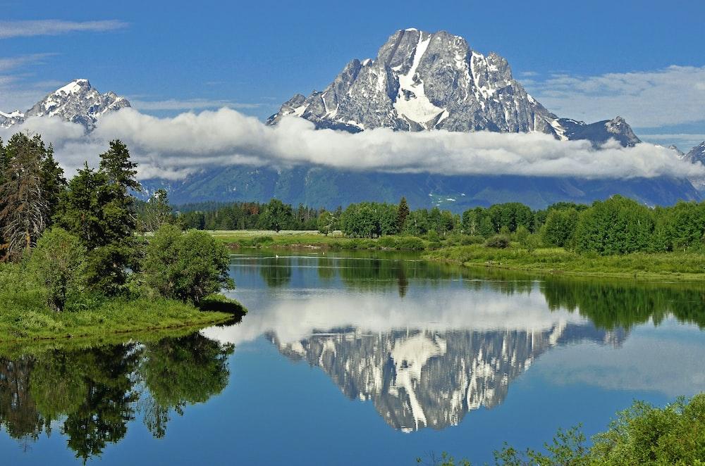 alps mountain near green trees