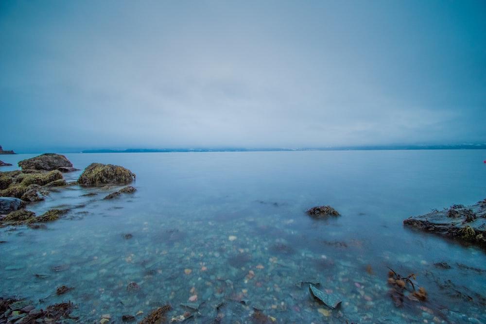 brown rocks on sea