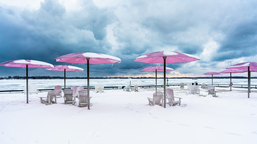 pink parasol covered with snow