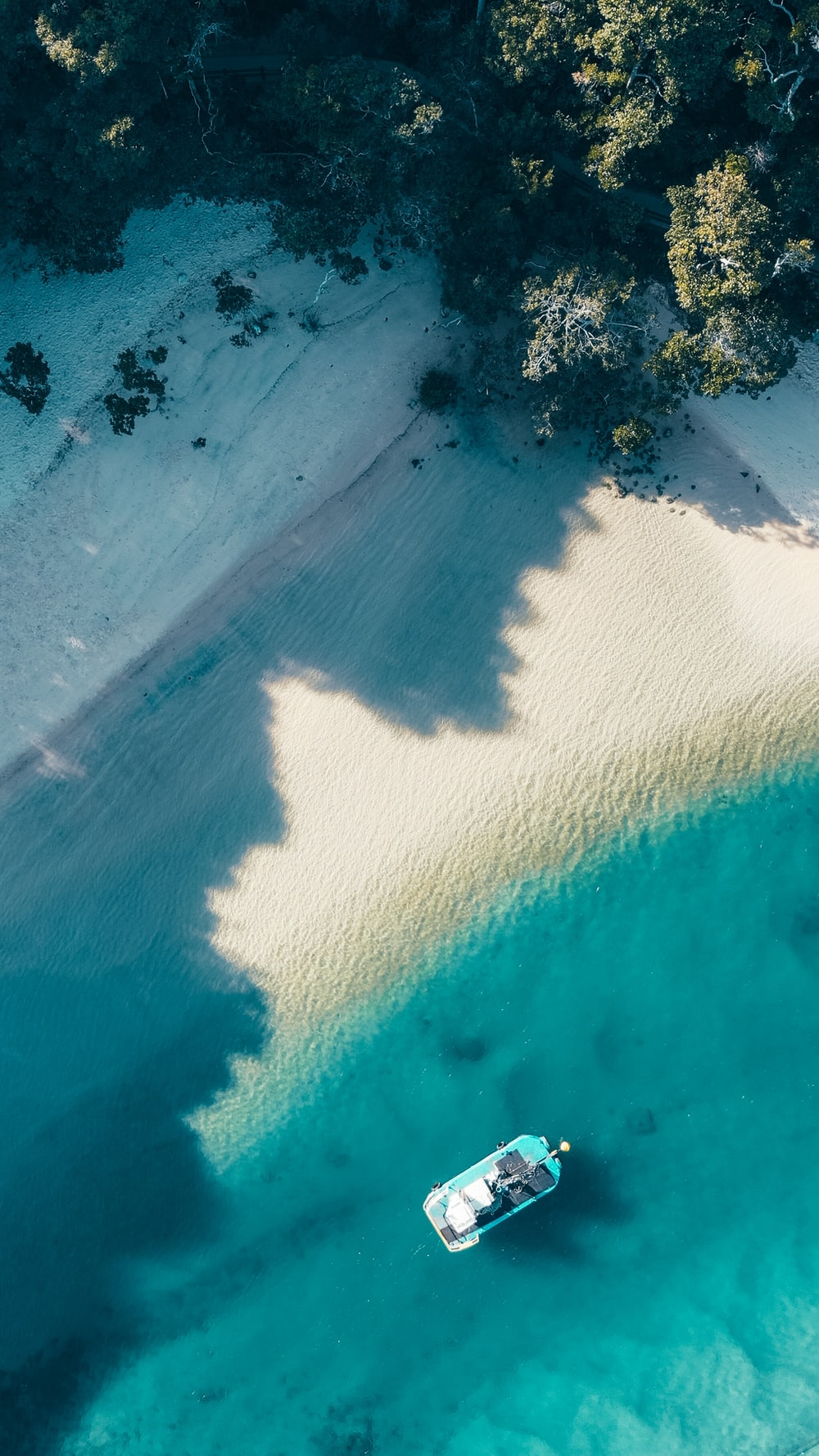 boat by shore near trees in aerial photgraphy