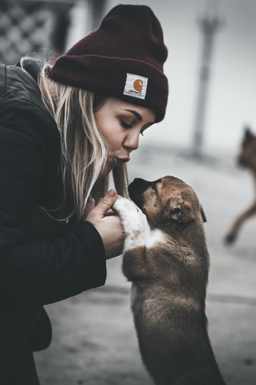 woman about to kiss a tan puppy