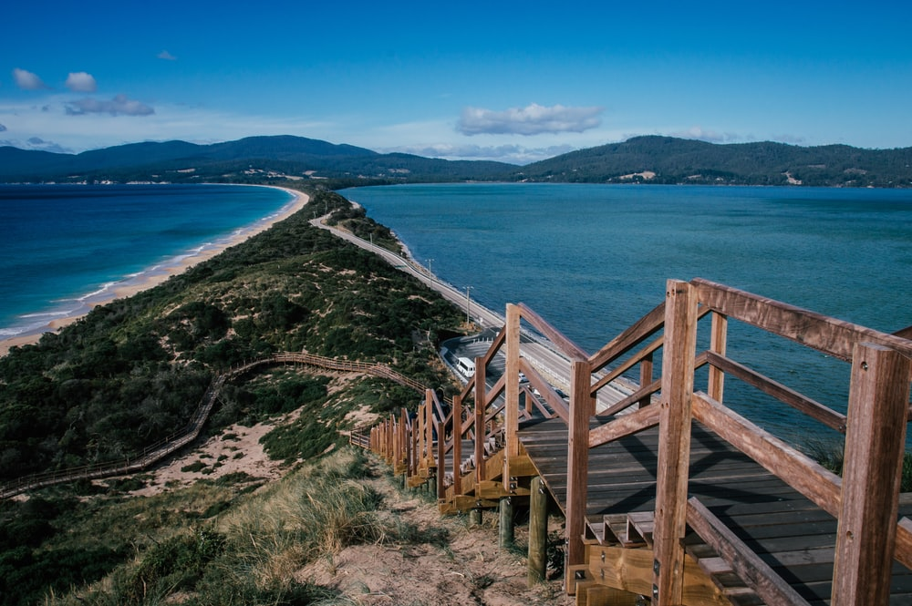 brown wooden pathway over the valley surrounded by blue sea during daytime