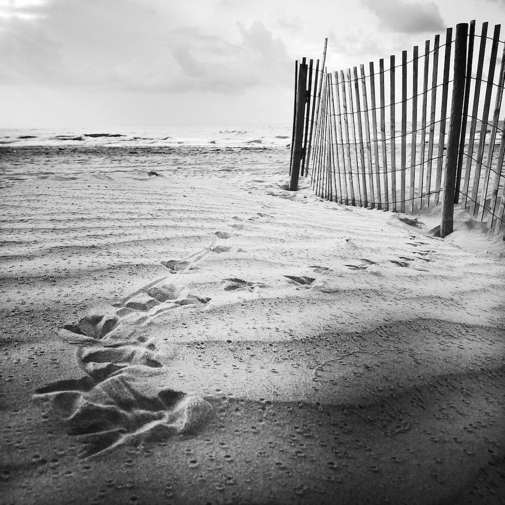 white wooden beach fence