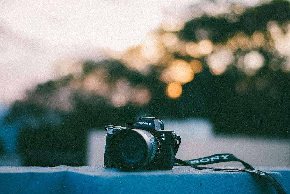 black Sony bridge camera