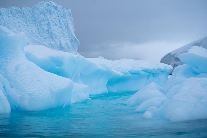 berwisata ke antartika