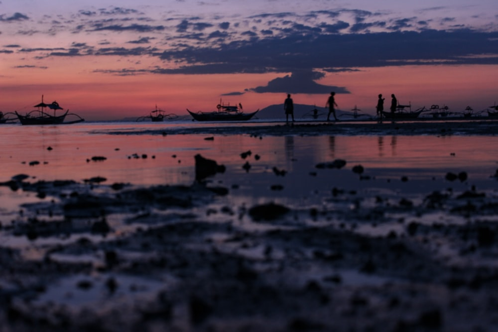 silhouette of people standing on shore during dusk