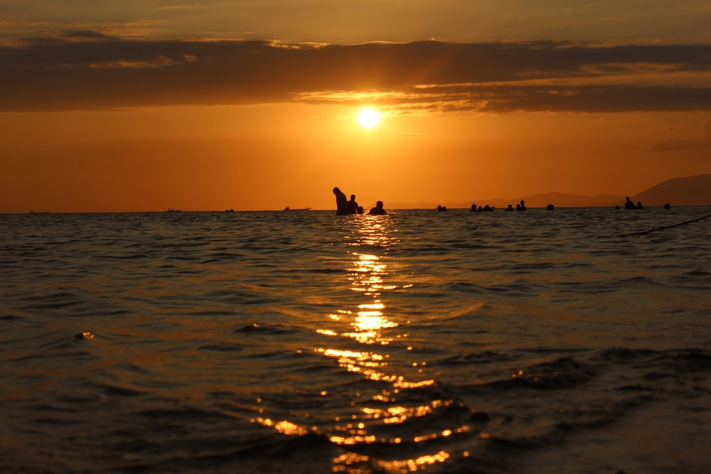 silhouette of people swimming on beach during sunset