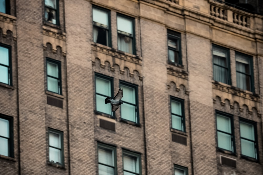 closed building windows