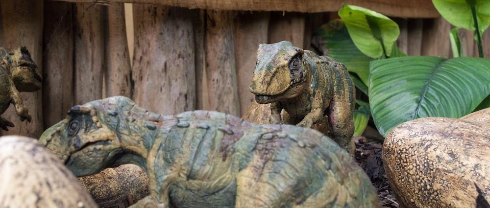 brown dinosaur near green plant