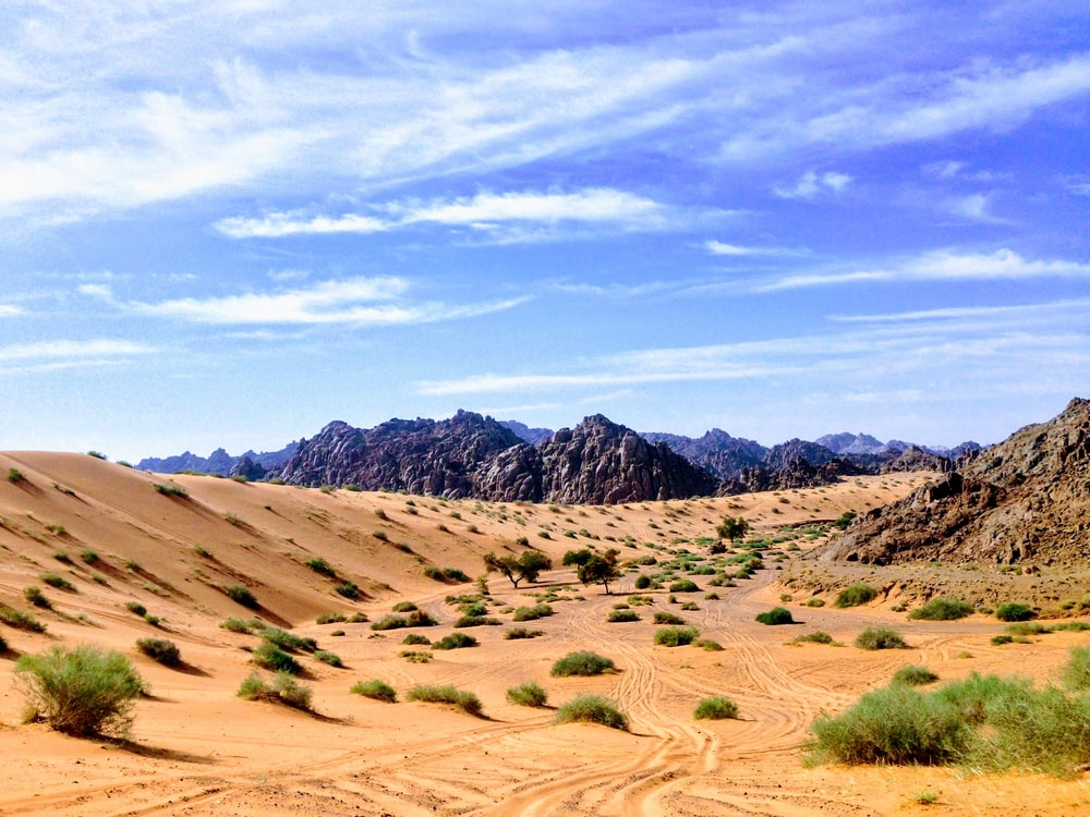 sand dune and mountain scenery