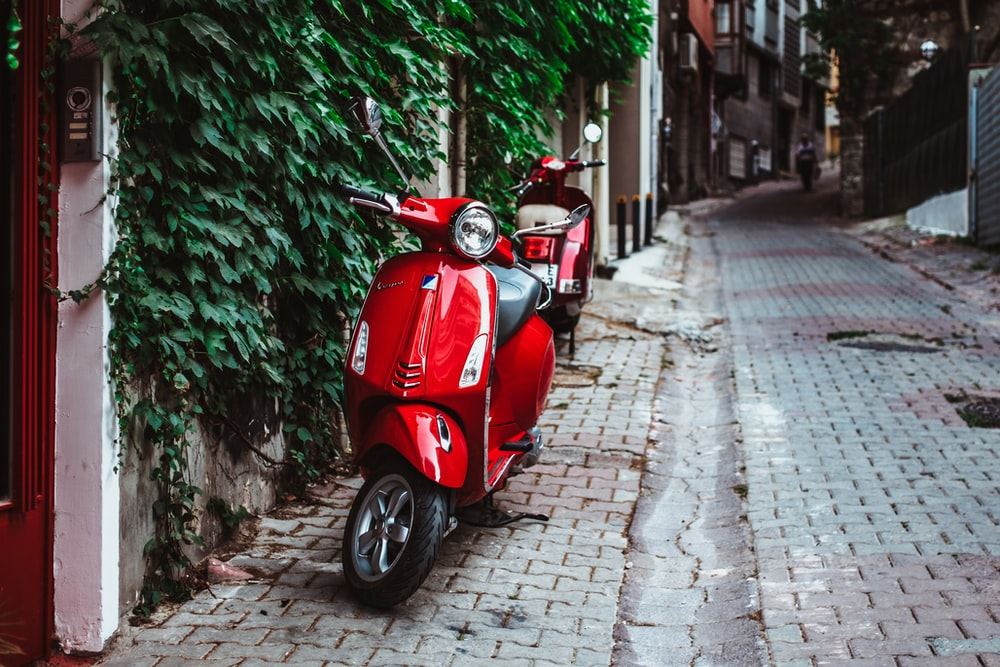 red motor scooter parked beside green plants