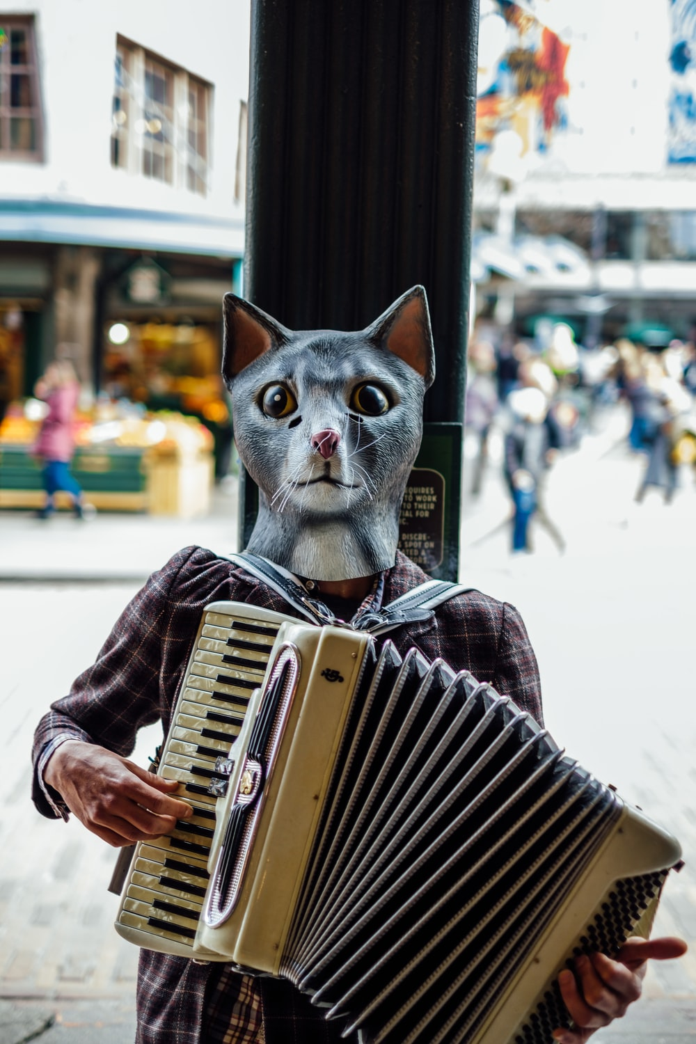 edited photo of person playing accordion