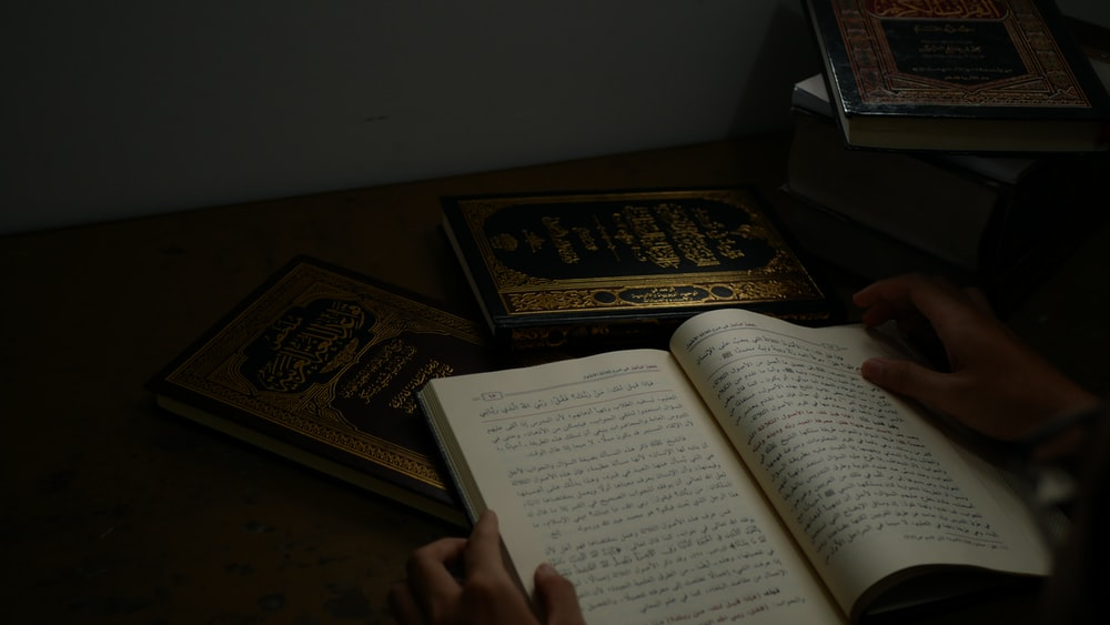 person holding quran book