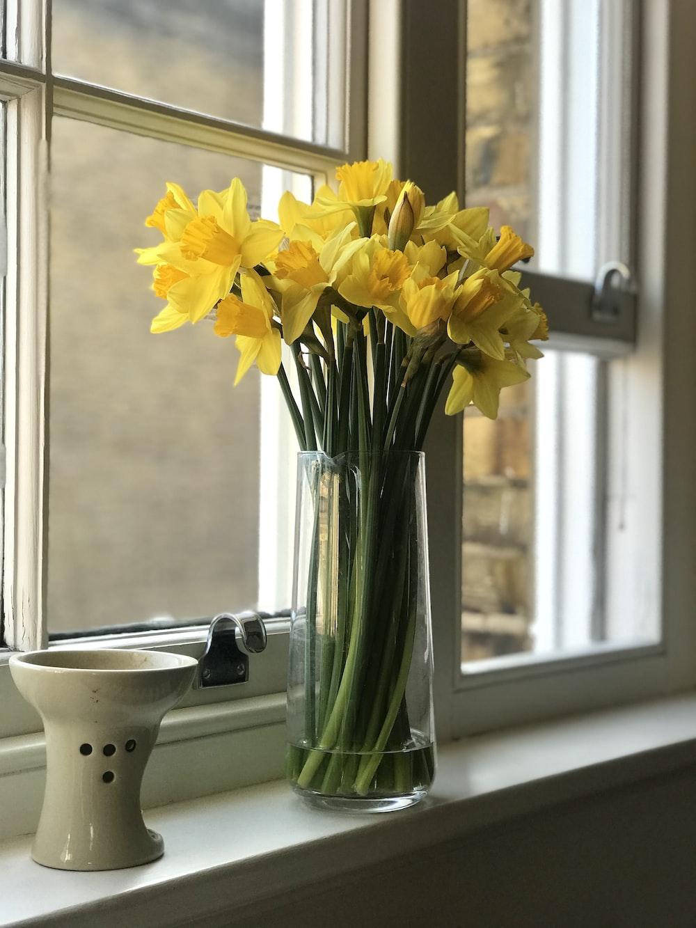 yellow flowers in vase beside window